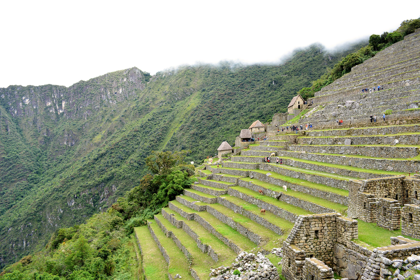 1. Peru e Bolívia - fev (570)
