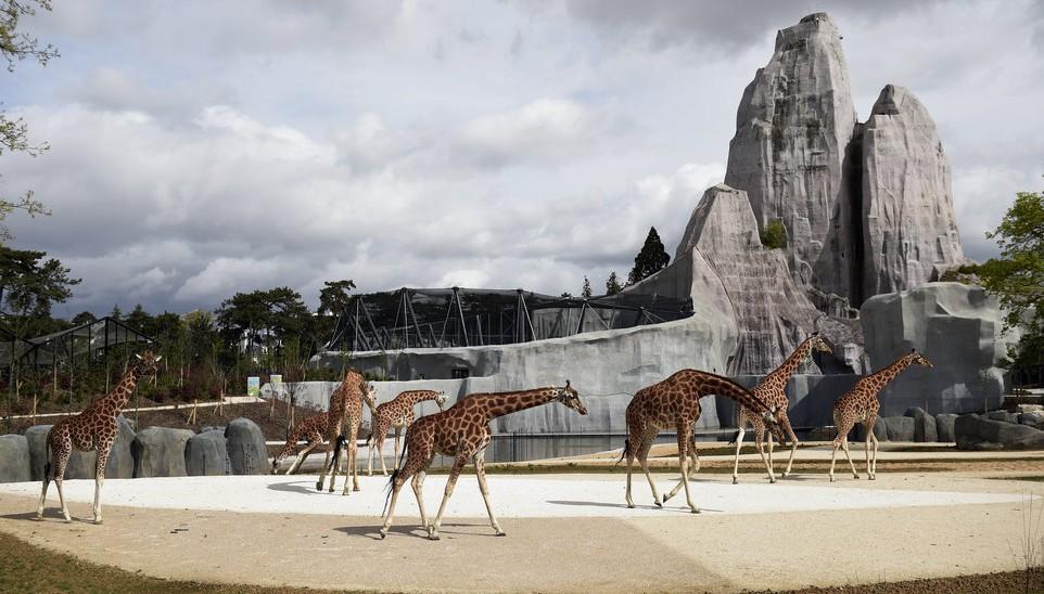 O parque tem uma área de 14,5 hectares, onde abriga mais de 180 espécies. Foto: AFP