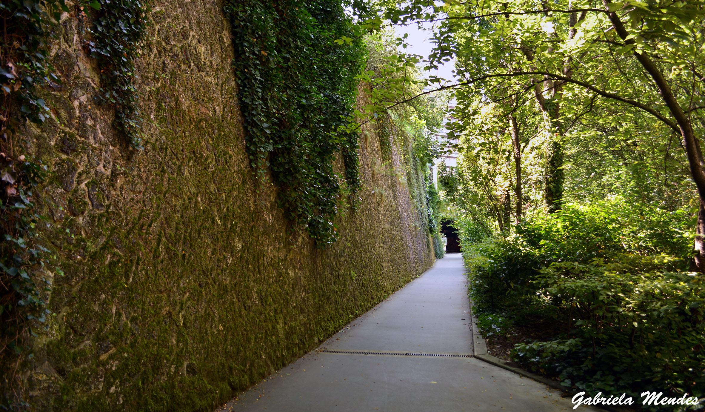 Um dos caminhos verdes que levam até o Bois de Vincennes.