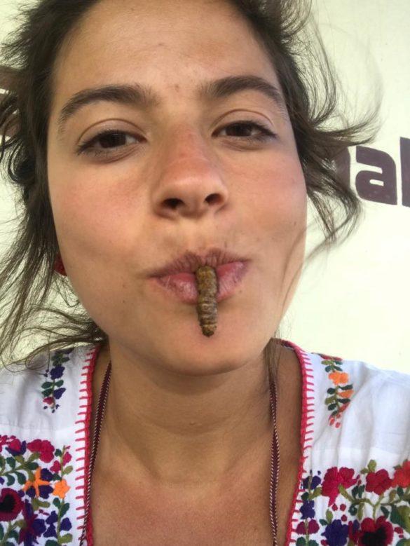 Gastronomia mexicana: o que não deixar de provar na sua viagem ao México